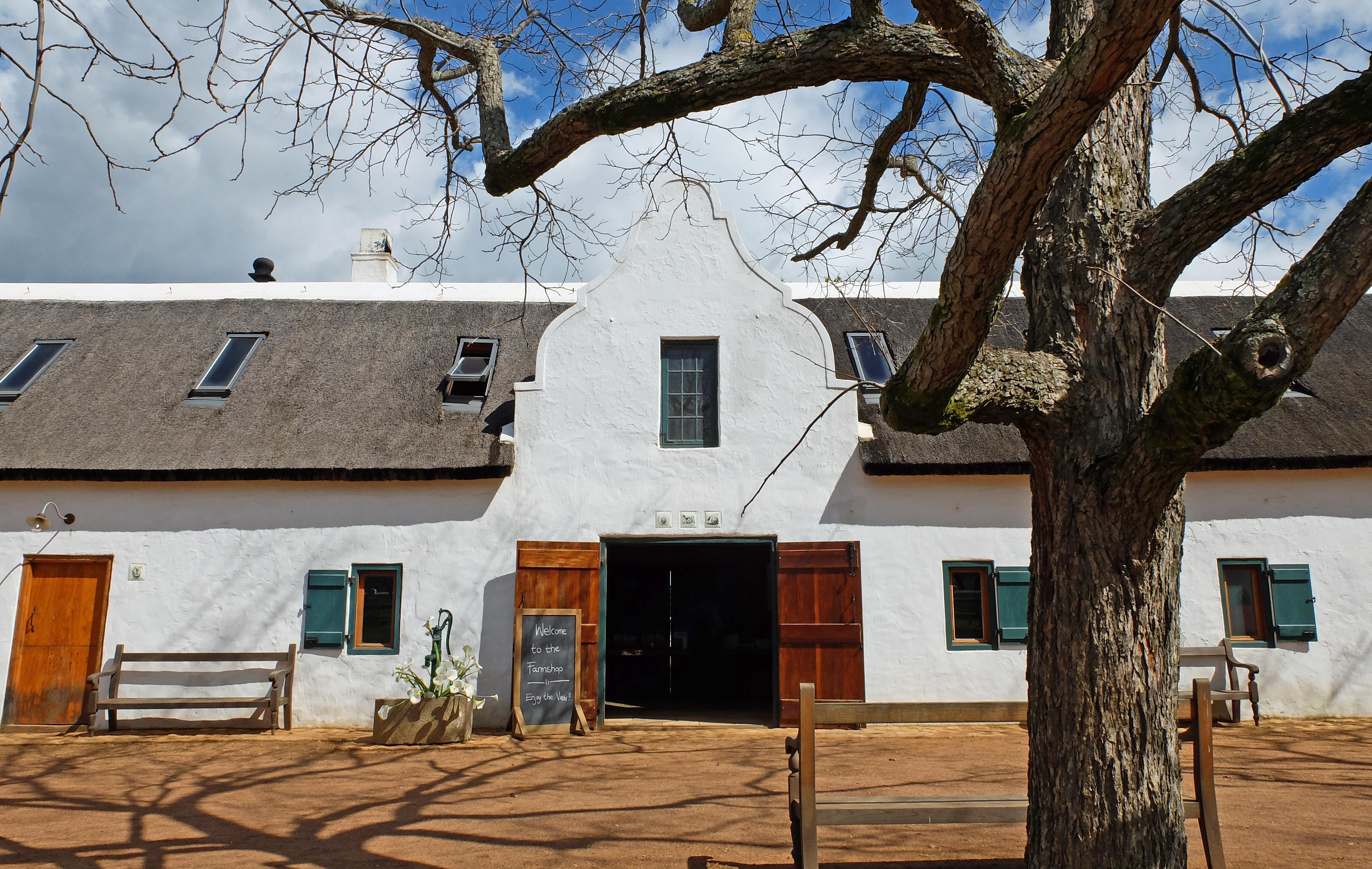 babylonstoren wine farm