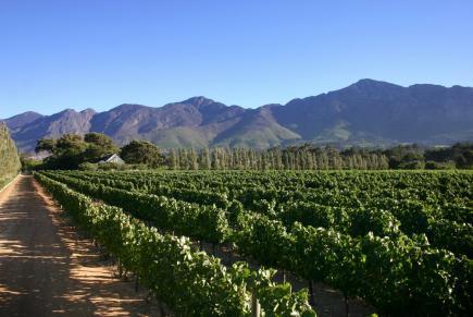 Franschhoek Wine Valleyauberge Clermont Franschhoek Wine
