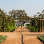 Babylonstoren garden 2