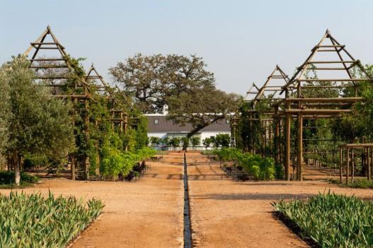 Franschhoek Wine Valley Babylonstoren Garden Tour