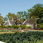 Babylonstoren garden 3
