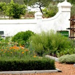Babylonstoren garden 4