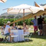 franschhoek-summer-wines-1