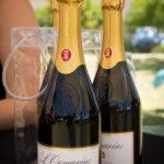 franschhoek-summer-wines-17