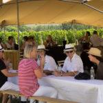 franschhoek-summer-wines-2