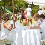 franschhoek-summer-wines-23