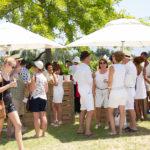 franschhoek-summer-wines-25