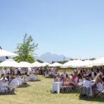 franschhoek-summer-wines-28