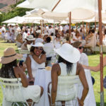 franschhoek-summer-wines-40