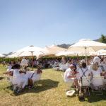 franschhoek-summer-wines-47
