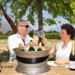 franschhoek-summer-wines-5