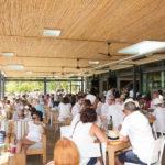 franschhoek-summer-wines-51