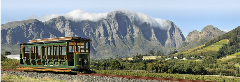 wine-tram