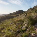 hiking-trail-44