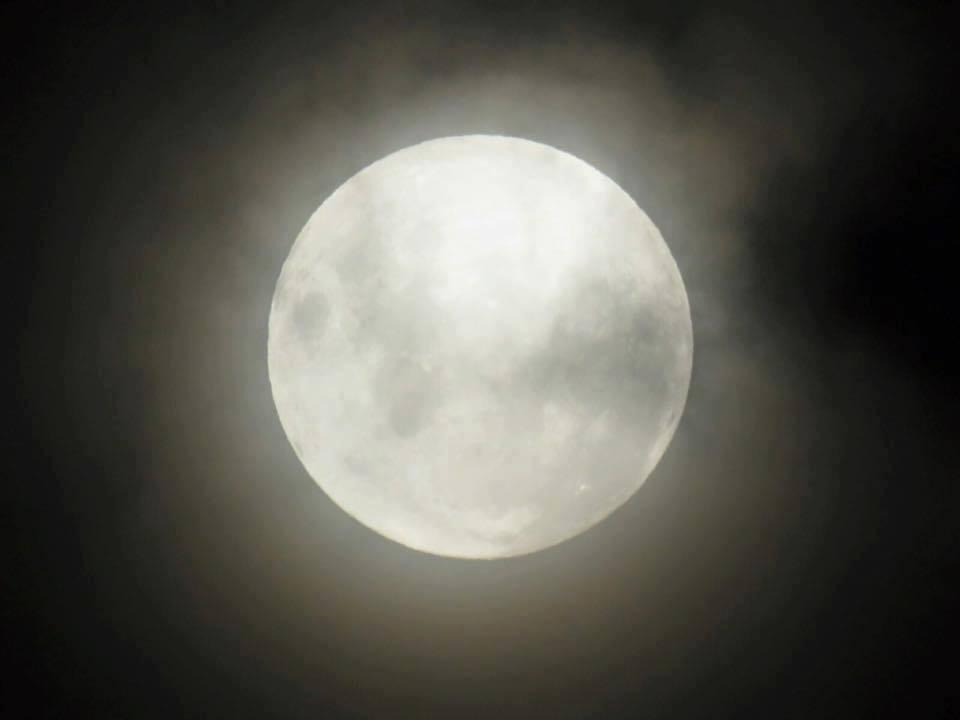 full-moon-walk-at-haute-espoir